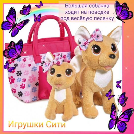 Собачка на поводке, со щенком, в сумке
